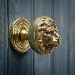 Lions Head Door Pull - Polished Brass