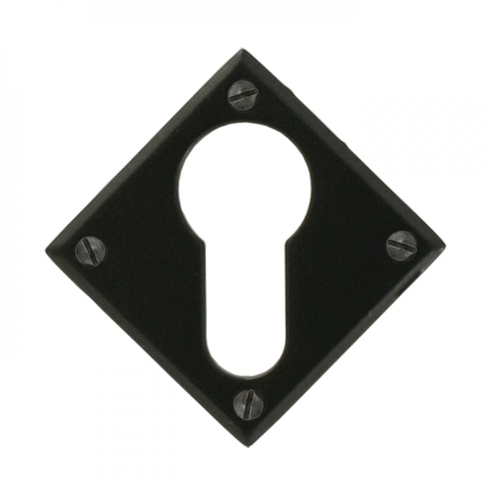 Black Diamond Euro Escutcheon image