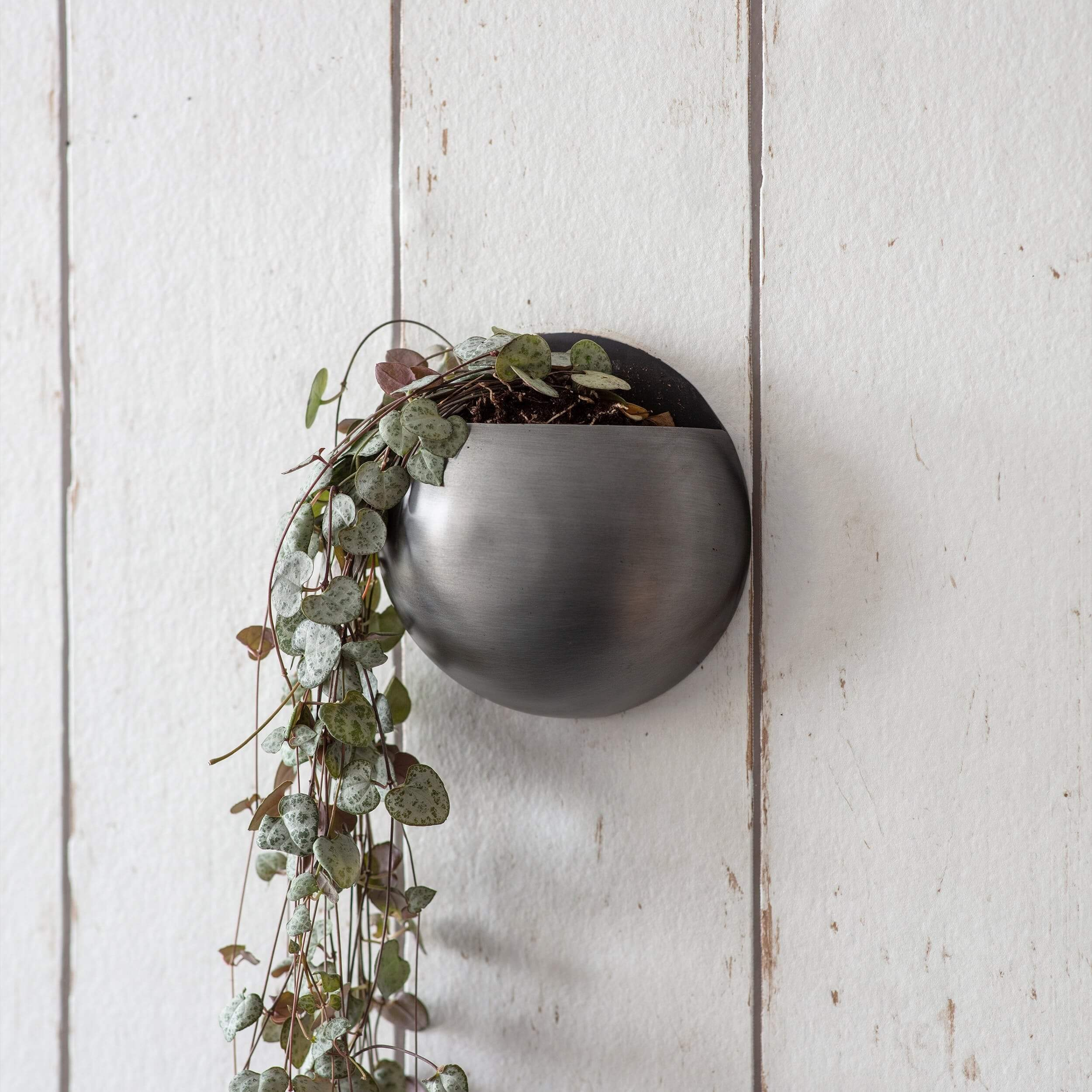 Round Wall Planter - Antique Pewter