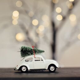 Christmas Car Decoration - White