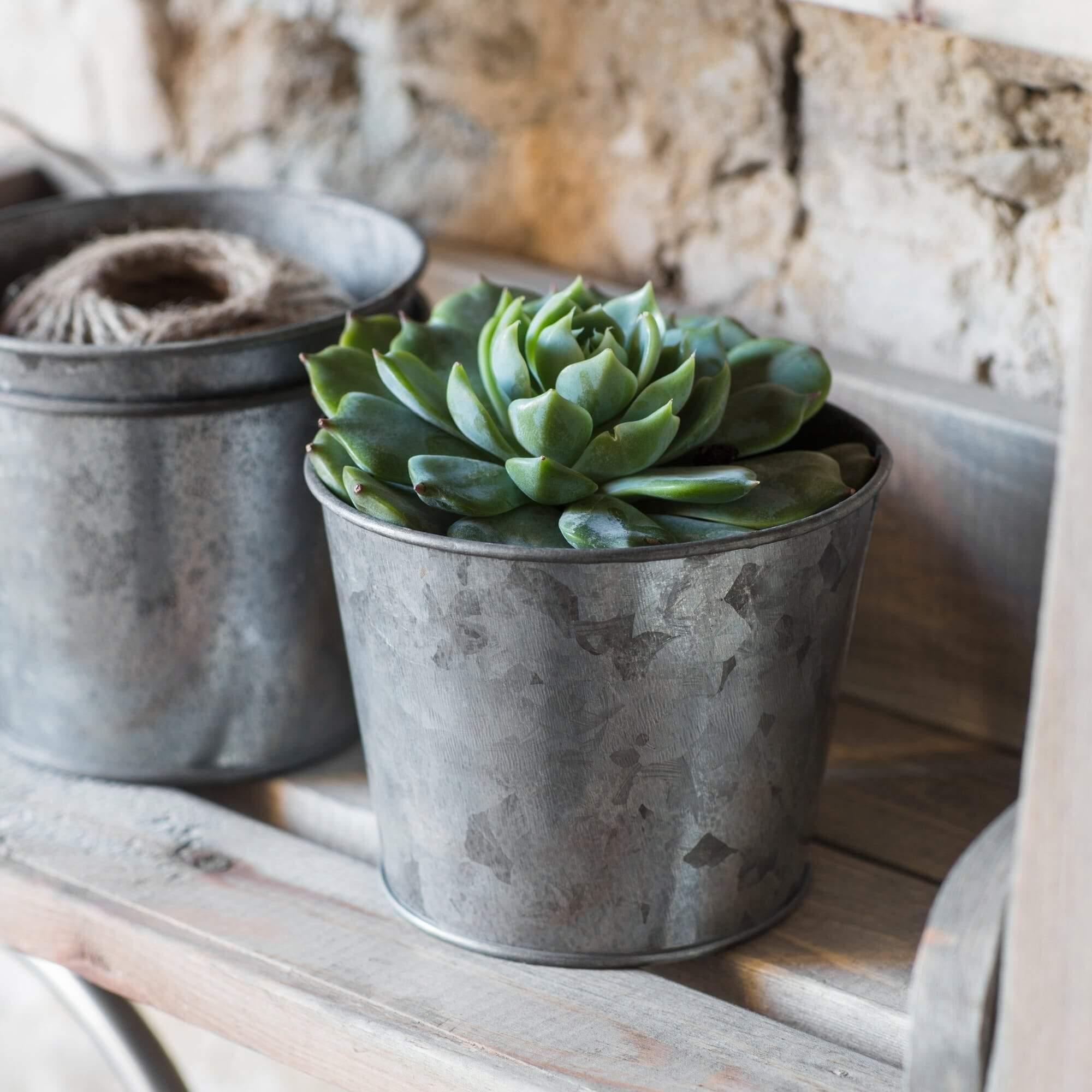 Plant Pots - Galvanised Steel