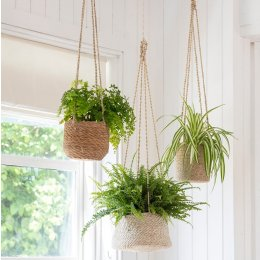 Hanging Seagrass Plant Pots - save 20%