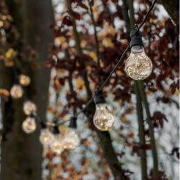 Festoon Extendable Outdoor Bulb Lights - 20 Bulb