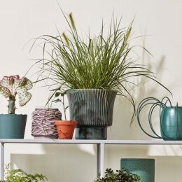Isaballa Stoneware Plant Pot - save 40%