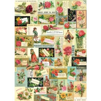 Flora & Fauna Vintage Style PosterWrap - SAVE 50%