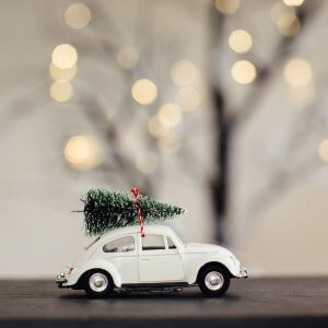 Christmas Car Decoration - White SAVE 50%