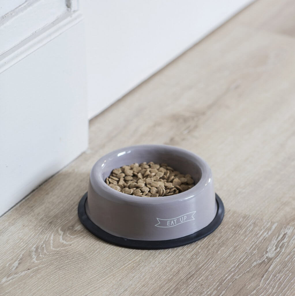 Eat Up Pet Bowls - save 40%