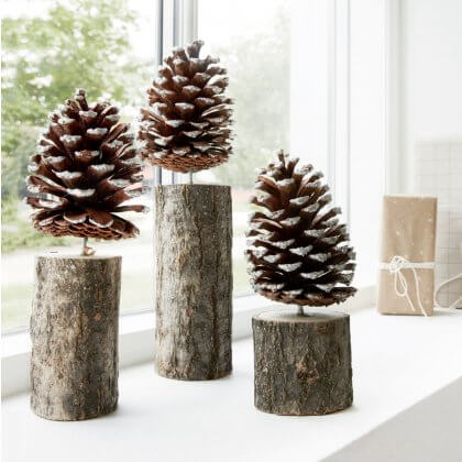 Pinecone Trees - save 60%