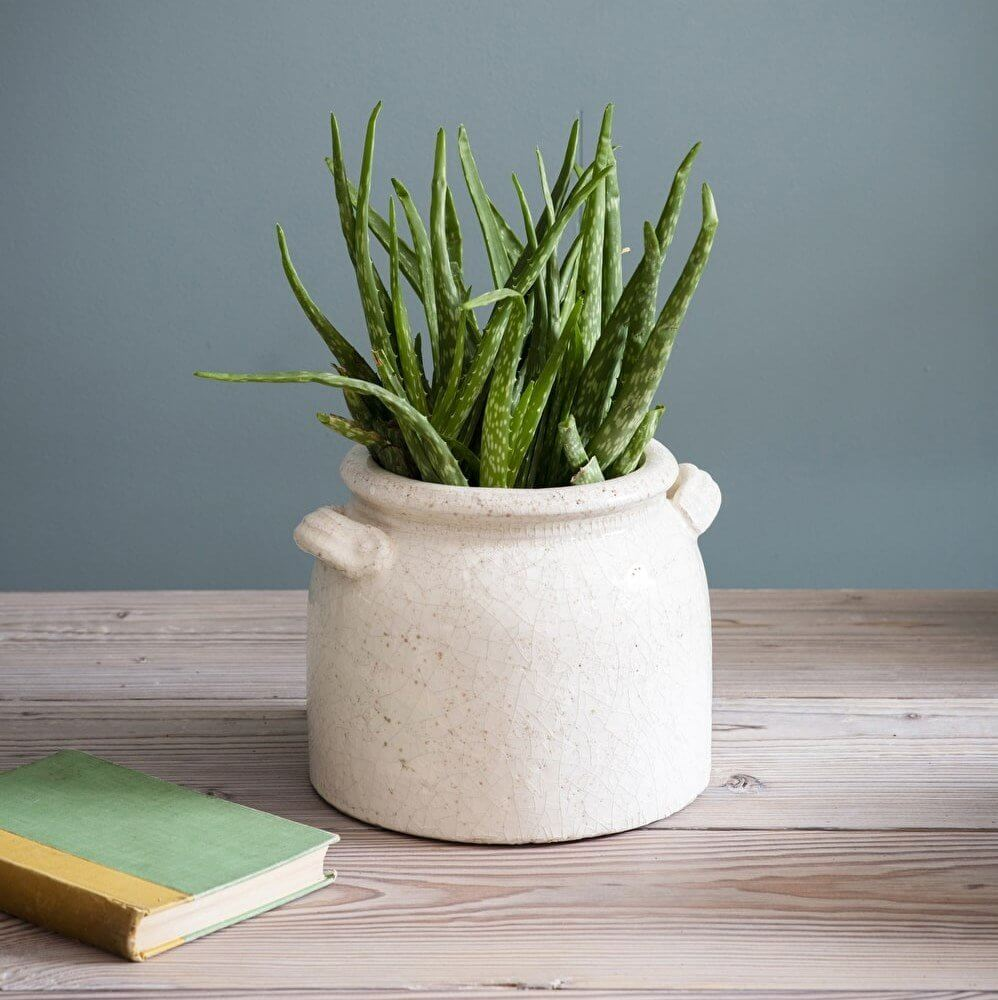 Ravello Crackle Glaze Pot