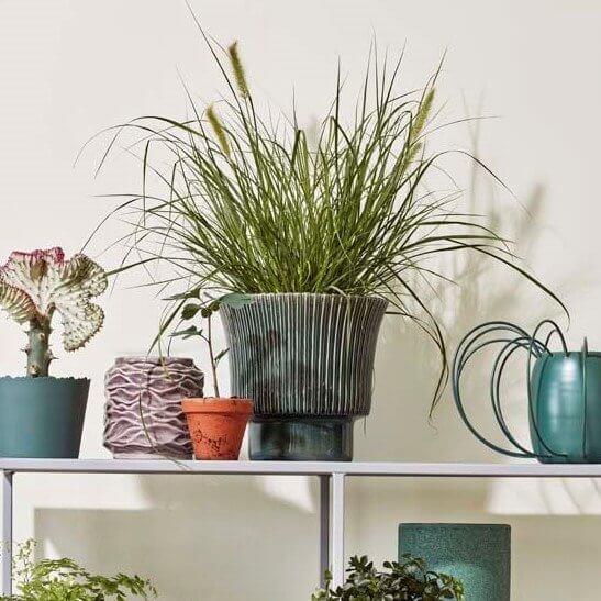 Isaballa Stoneware Plant Pot