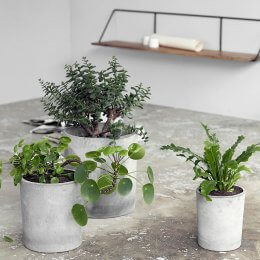 Concrete Planters Indoor / Outdoor - Set of 3 save 10%