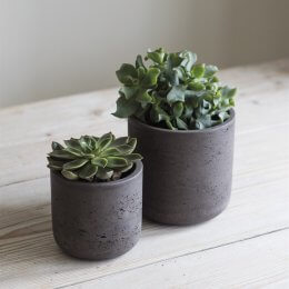 Cocoa Cement Plant Pots - Set of 2